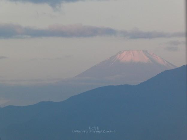 201113-富士山 (1)