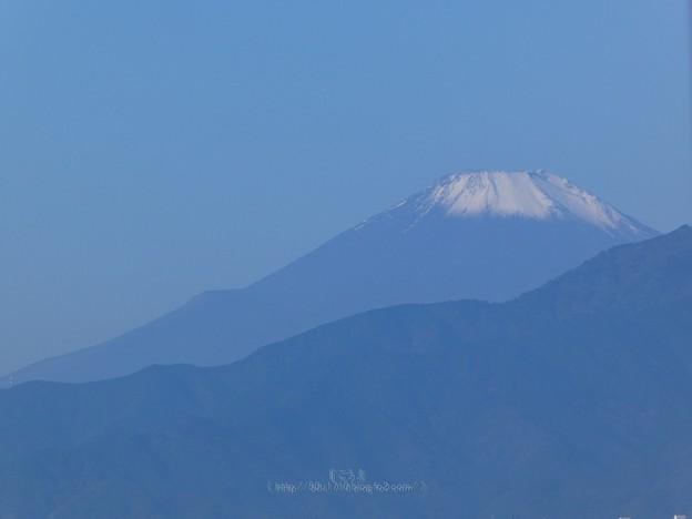 201114-富士山 (1)