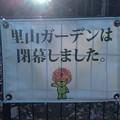 Photos: P_20201119_里山ガーデン (7)
