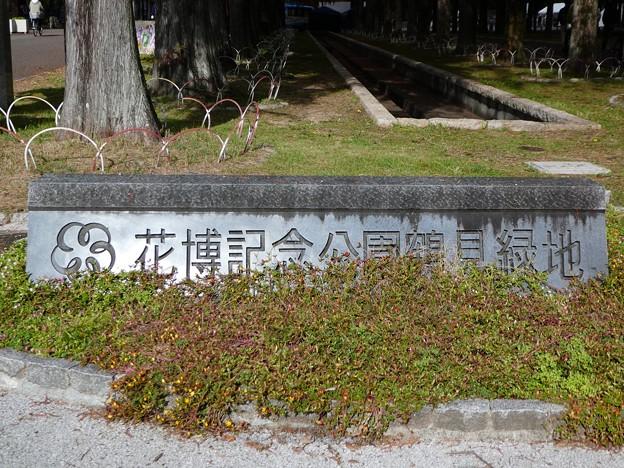 Photos: 201121・22 大阪鶴見緑地 (5)