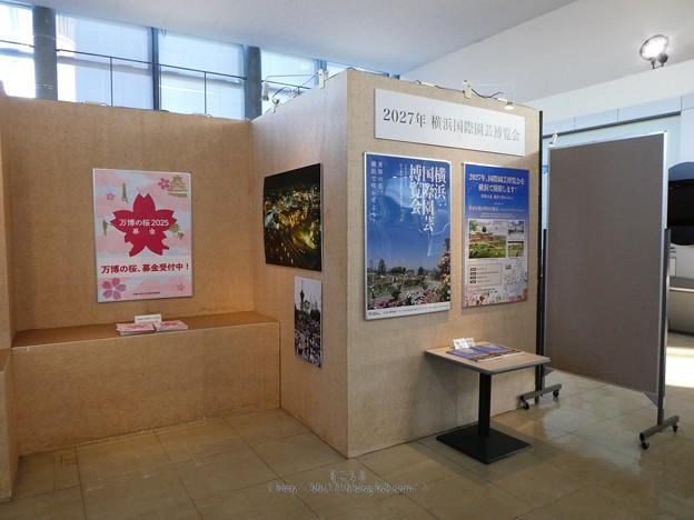 201121-大阪花博30周年メモリアル展@咲くやこの花館 (31)