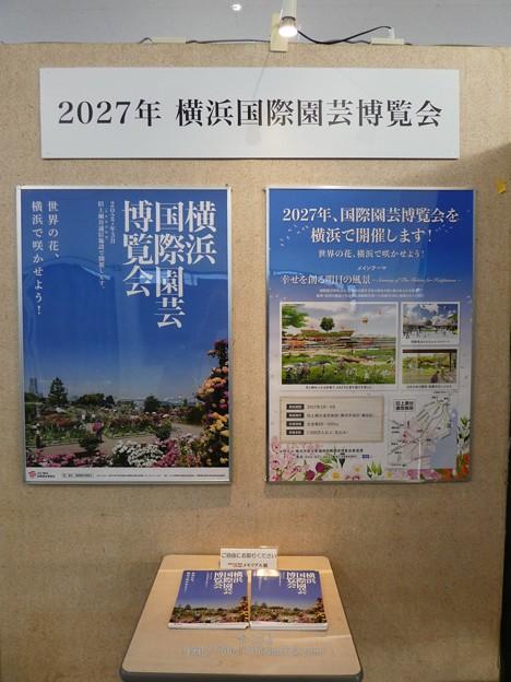 201121-大阪花博30周年メモリアル展@咲くやこの花館 (32)