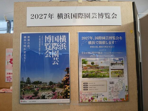 201121-大阪花博30周年メモリアル展@咲くやこの花館 (33)