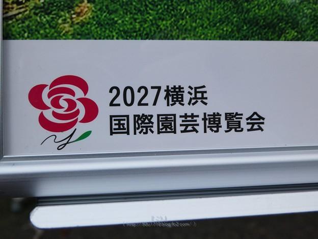 201121・22-横浜花博PRテント@鶴見緑地 (15)
