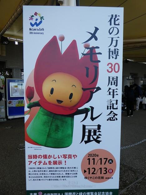 201121-大阪花博30周年メモリアル展@咲くやこの花館 (1)