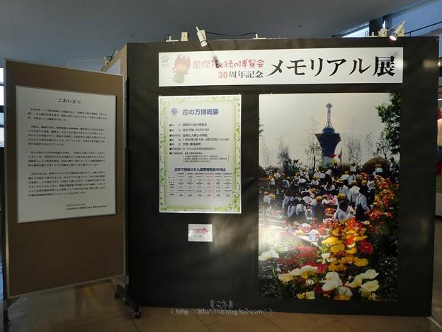 201121-大阪花博30周年メモリアル展@咲くやこの花館 (9)
