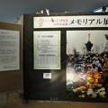 Photos: 201121-大阪花博30周年メモリアル展@咲くやこの花館 (9)