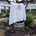 20112・22 花ずきんちゃんモニュメント@大阪鶴見緑地 (1)