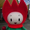 201122-花ずきんちゃんグリーティング (5)