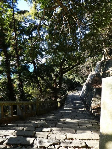 210110-久能山東照宮(参道) (35)