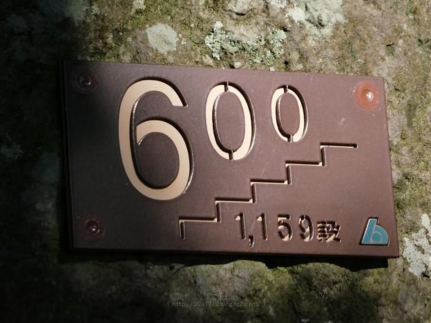210110-久能山東照宮(参道) (38)