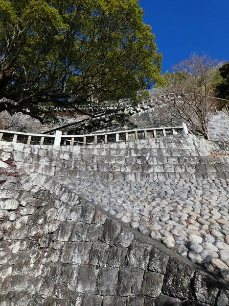 210110-久能山東照宮(参道) (40)