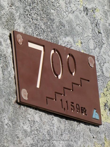 210110-久能山東照宮(参道) (44)