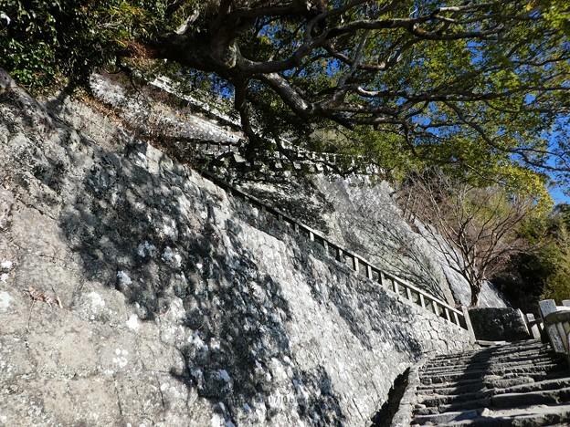 210110-久能山東照宮(参道) (45)