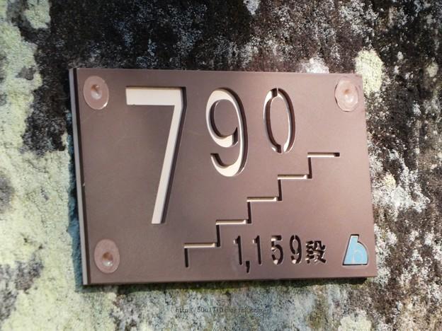 210110-久能山東照宮(参道) (51)