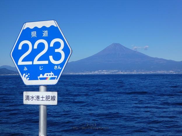 210110-駿河湾フェリー (86)