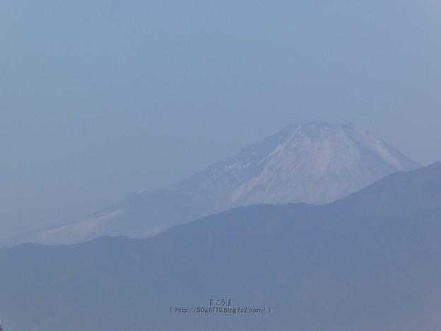 Photos: 210116-富士山 (1)