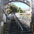 Photos: 210131-吾妻山公園 (1)