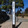 Photos: 210131-吾妻山公園 (73)