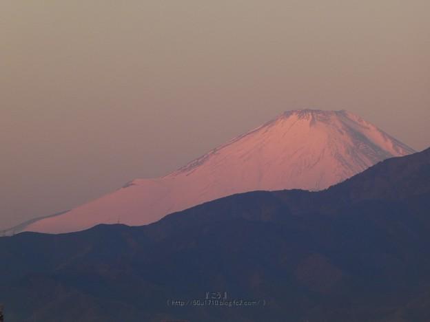 210211-富士山 (1)