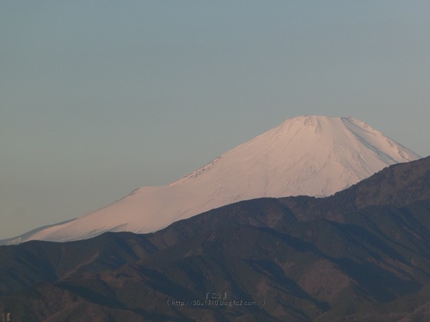 Photos: 210219-富士山 (6)