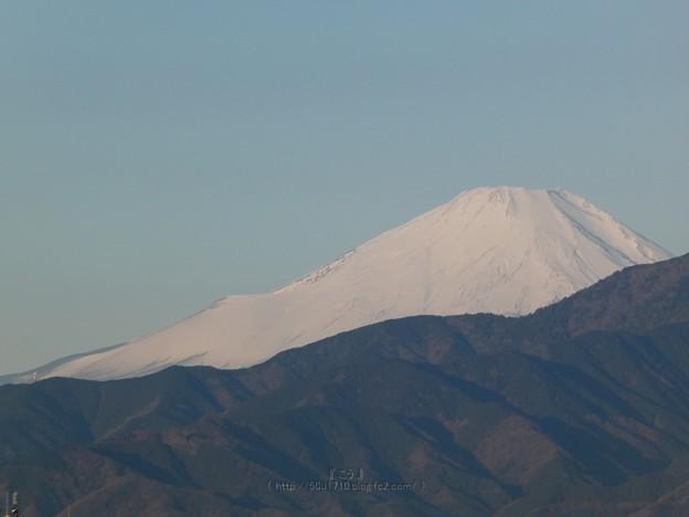 210219-富士山 (11)