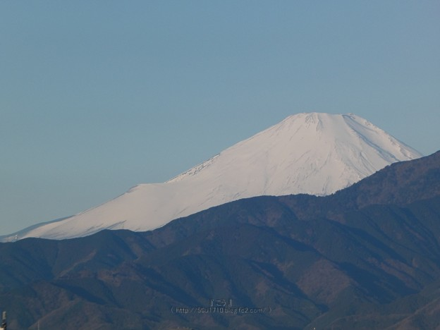210219-富士山 (12)