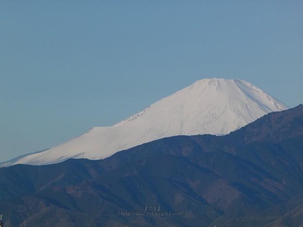 210219-富士山 (15)