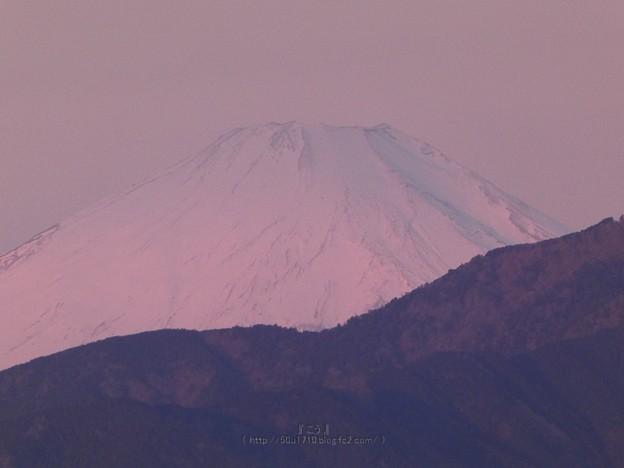 Photos: 210219-富士山 (2)