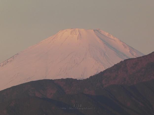 Photos: 210219-富士山 (4)