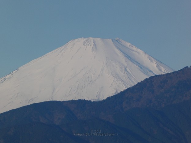 210219-富士山 (17)