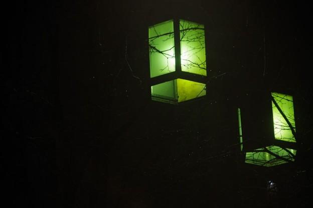 Photos: 緑の灯