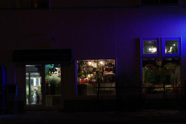 Photos: 夜の花屋