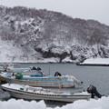 Photos: 忍路漁港
