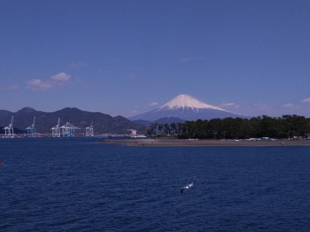清水港からの富士
