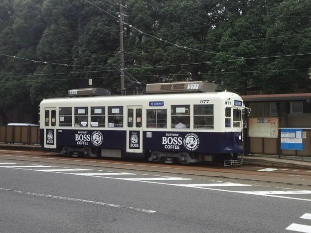 【12151号】路面電車 平成290627 #NTS2