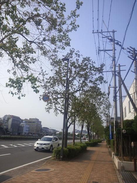 【13533号】素材:街並み  平成300427 #NPS1