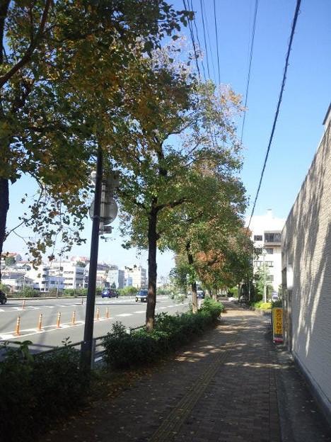 【14138号】素材:街並み 平成301117 /2