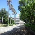 Photos: 【14700号】キャンパス  令和010521 /3