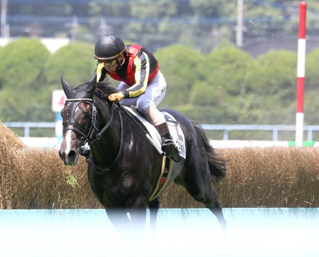 ファントムライト(2018/08/12 小倉4R 3歳上障害未勝利)