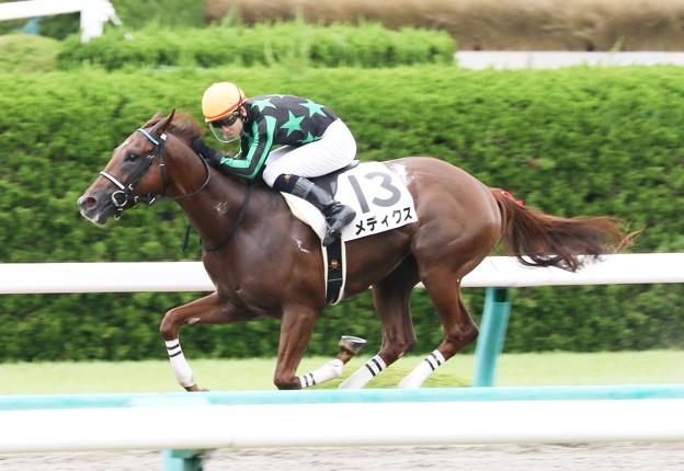 メディクス(阪神6R 2歳新馬)