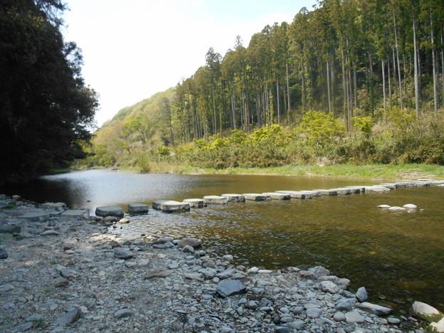 嵐山渓谷渡河石