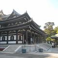 Photos: 鎌倉長谷寺観音堂