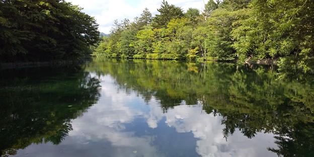 軽井沢雲場池