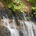 Photos: 滝水の吹き出し口