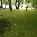 塩沢湖タリアセン庭園内