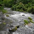 軽井沢渓流