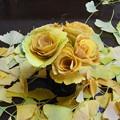 イチョウの葉でバラの花
