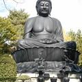 Photos: 東京大仏