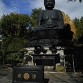 Photos: 東京大仏 青空